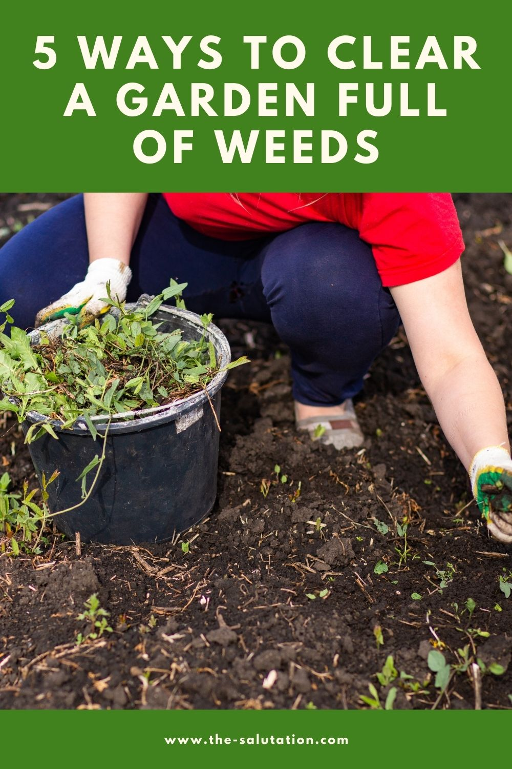 5 Ways to Clear a Garden Full of Weeds