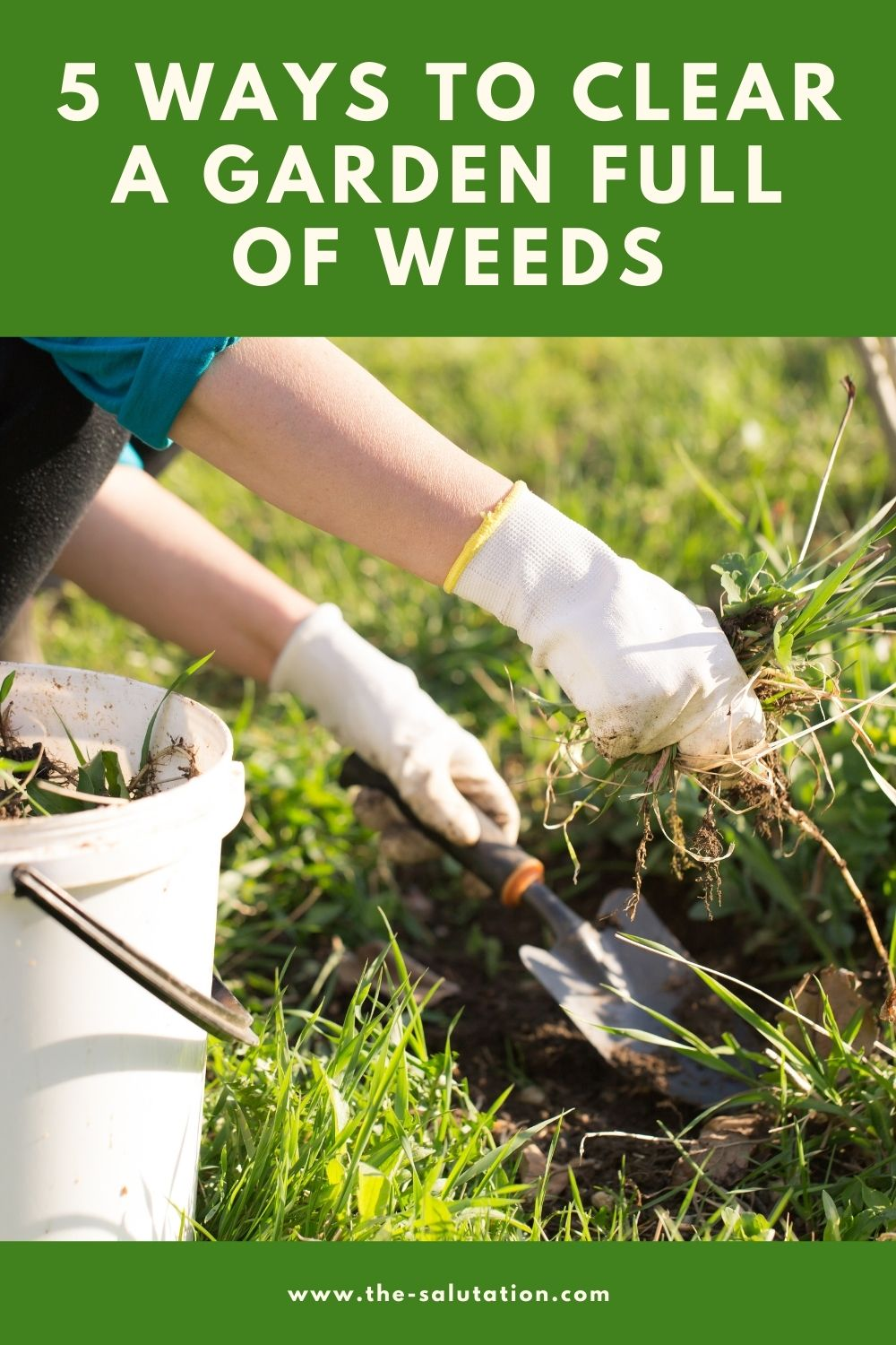 5 Ways to Clear a Garden Full of Weeds 2