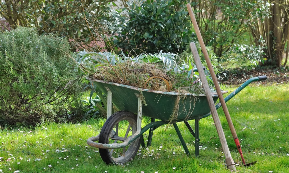 8 Tips to Dispose of Garden Waste