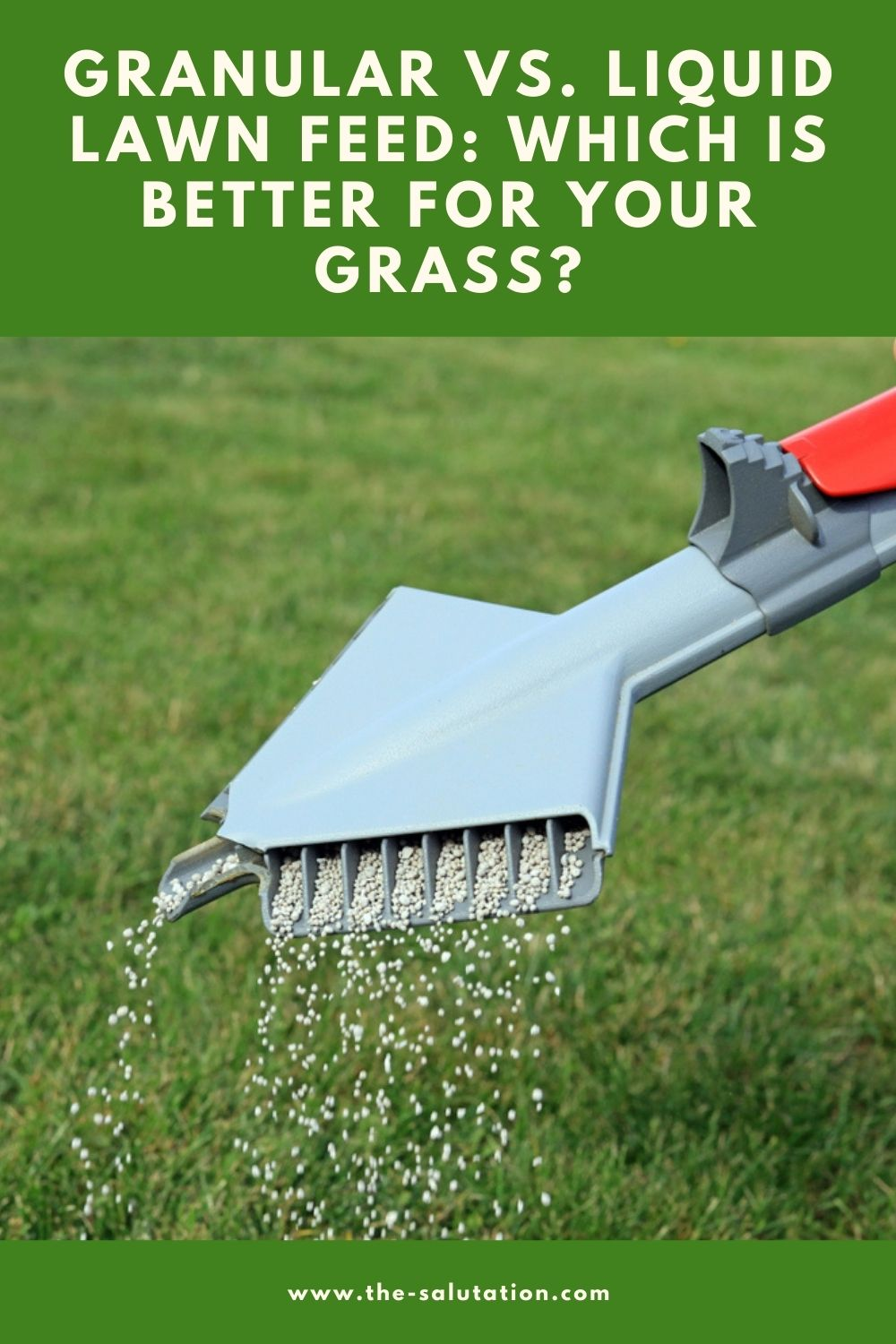 Granular vs. Liquid Lawn Feed Which is Better for Your Grass 1