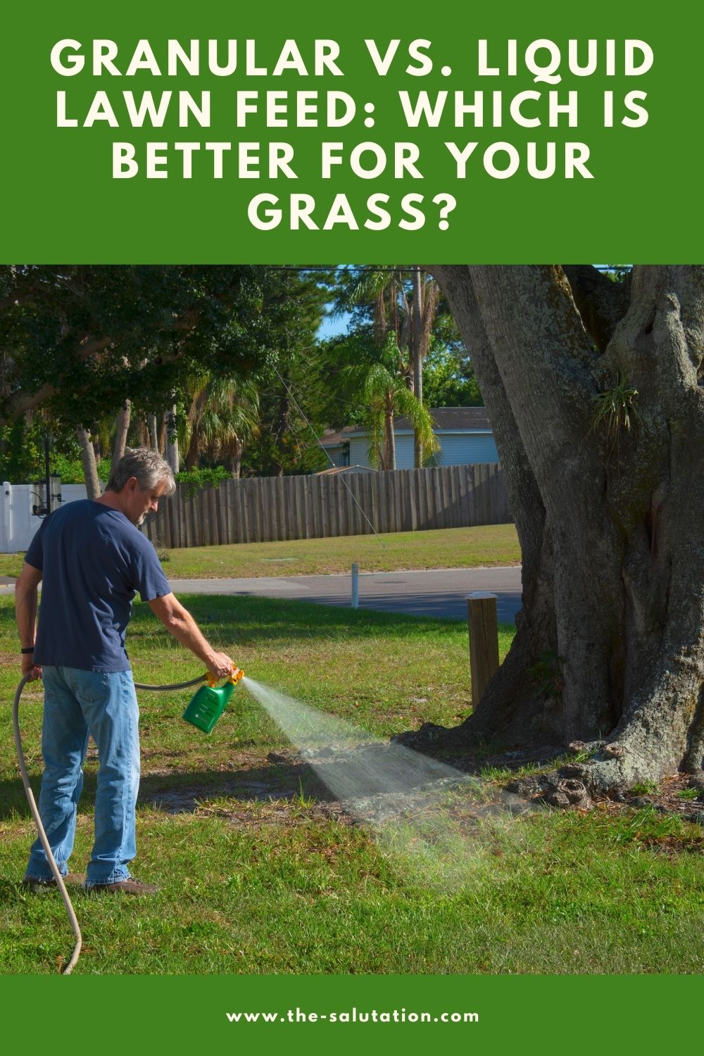 Granular vs. Liquid Lawn Feed Which is Better for Your Grass 2