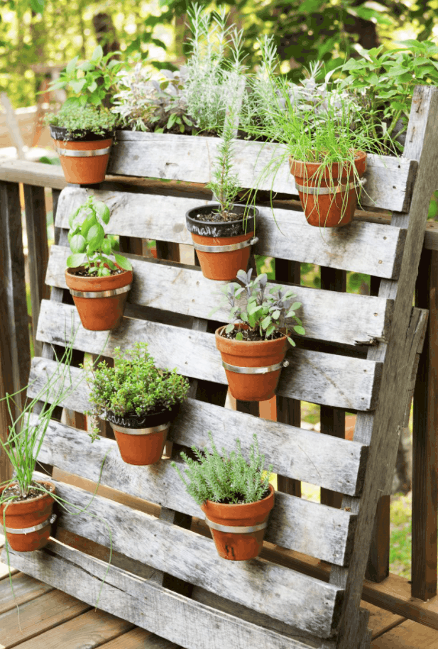 Pallets and Plants