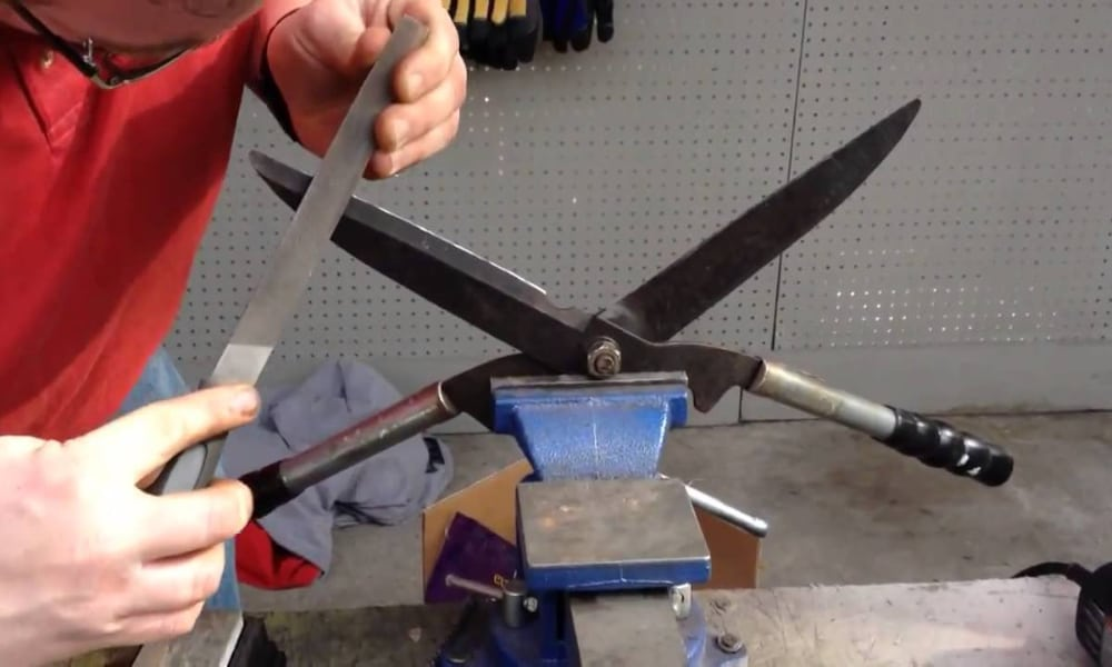 Position the shears properly