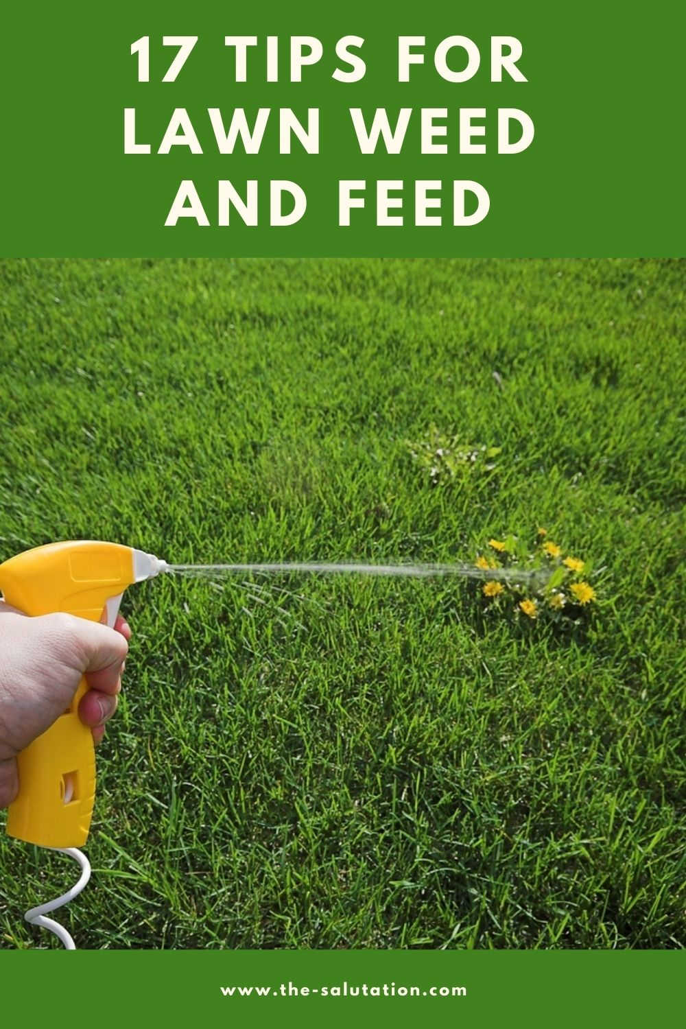 17 Tips for Lawn Weed and Feed 1