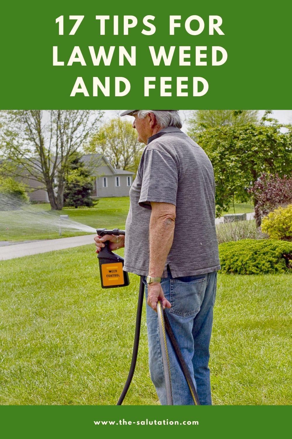 17 Tips for Lawn Weed and Feed 2