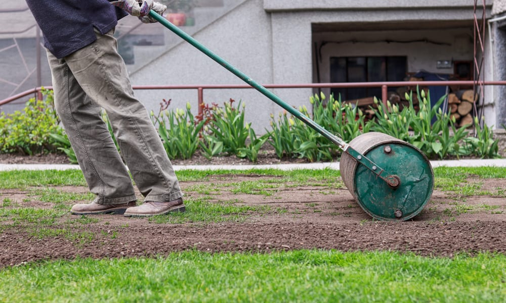 5 Easy Steps to Level a Lawn