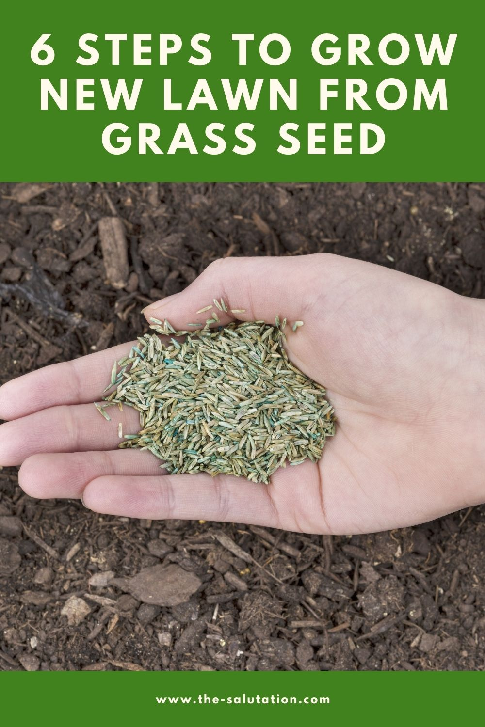 6 Steps to Grow New Lawn from Grass Seed 1