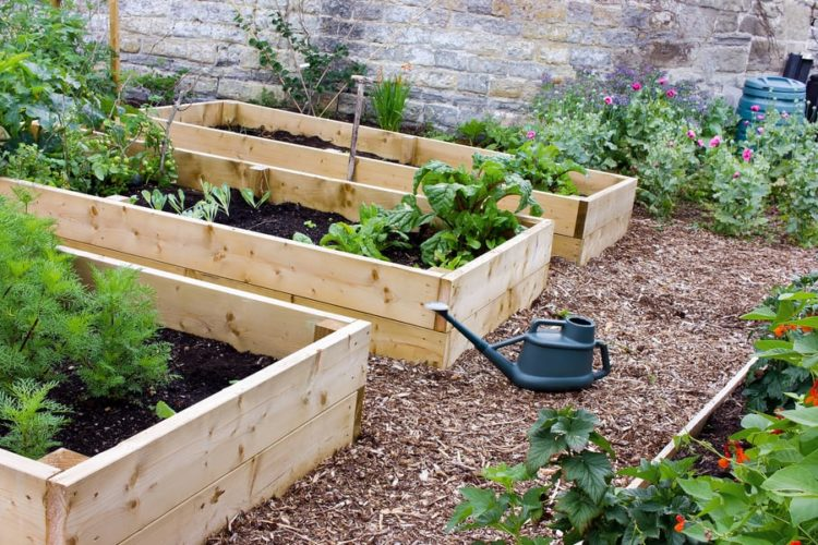 6 Steps to Make Raised Garden Bed