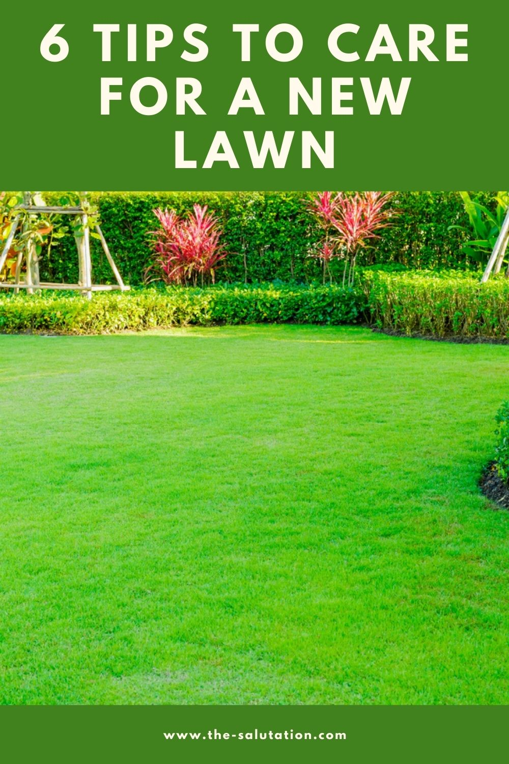 6 Tips to Care for a New Lawn 1