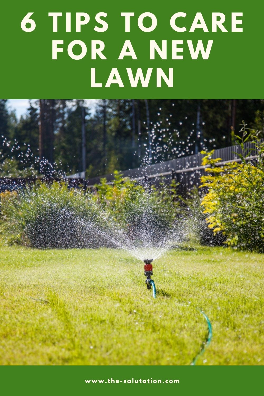 6 Tips to Care for a New Lawn 2