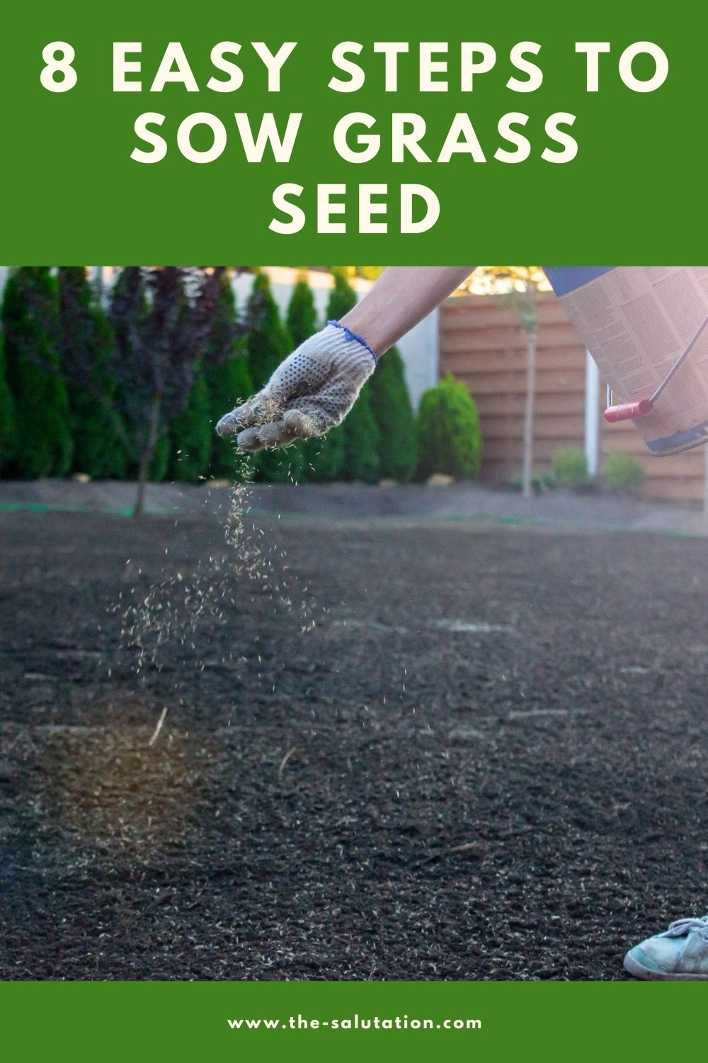 8 Easy Steps to Sow Grass Seed 1