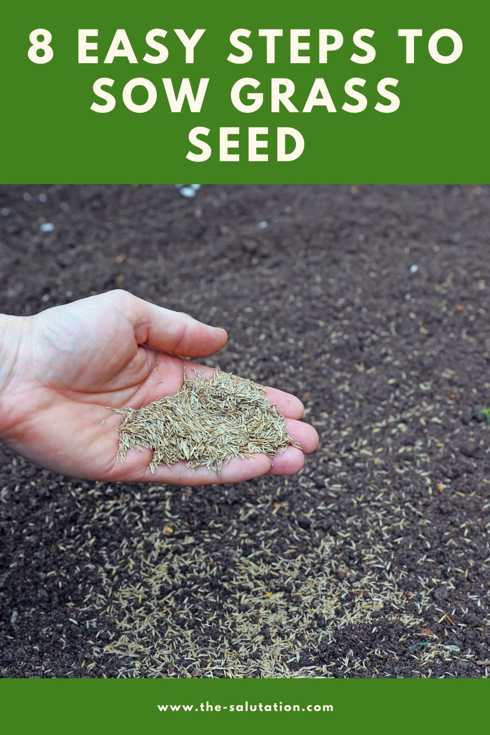 8 Easy Steps to Sow Grass Seed 2
