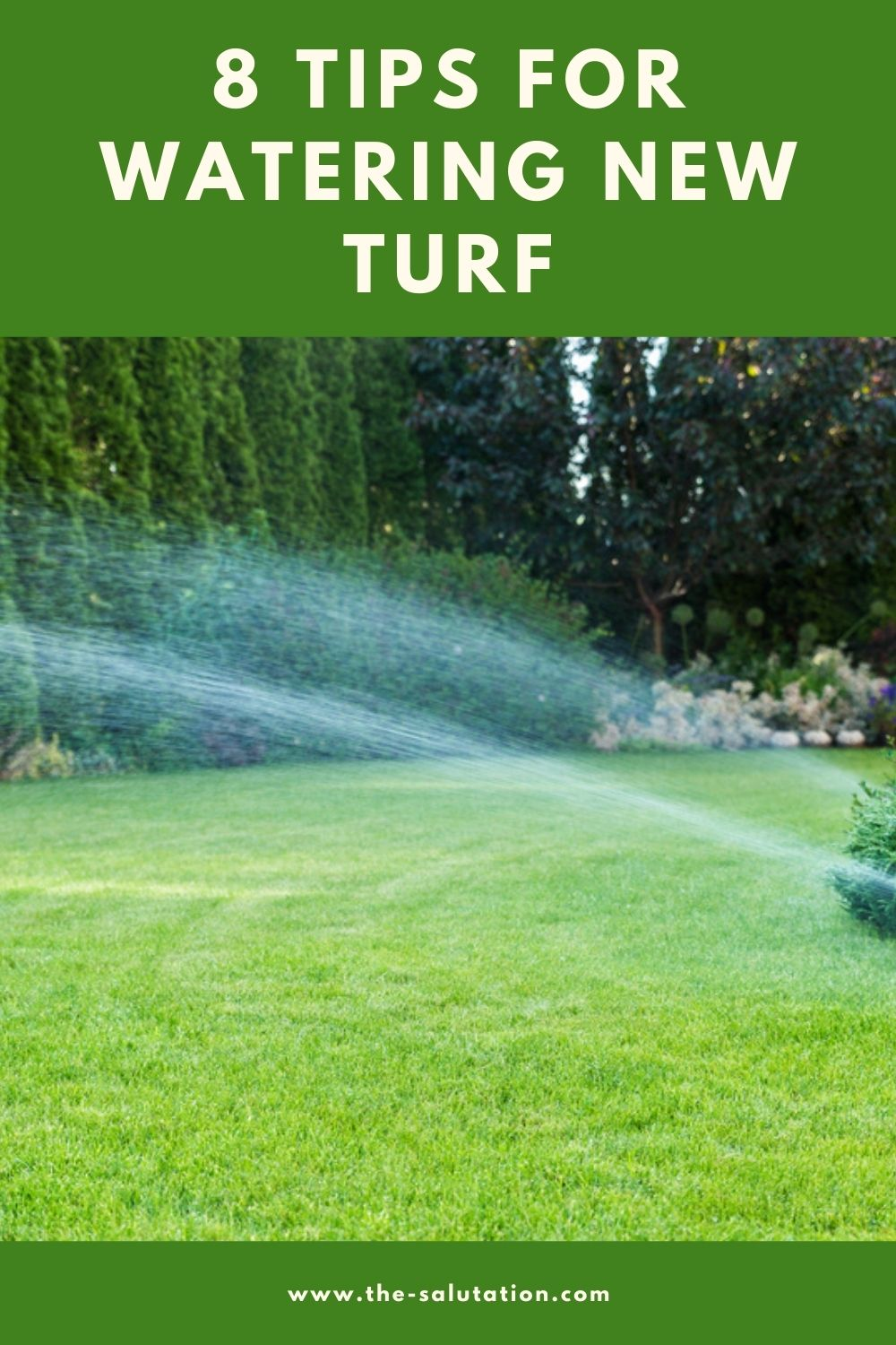 8 Tips for Watering New Turf 2
