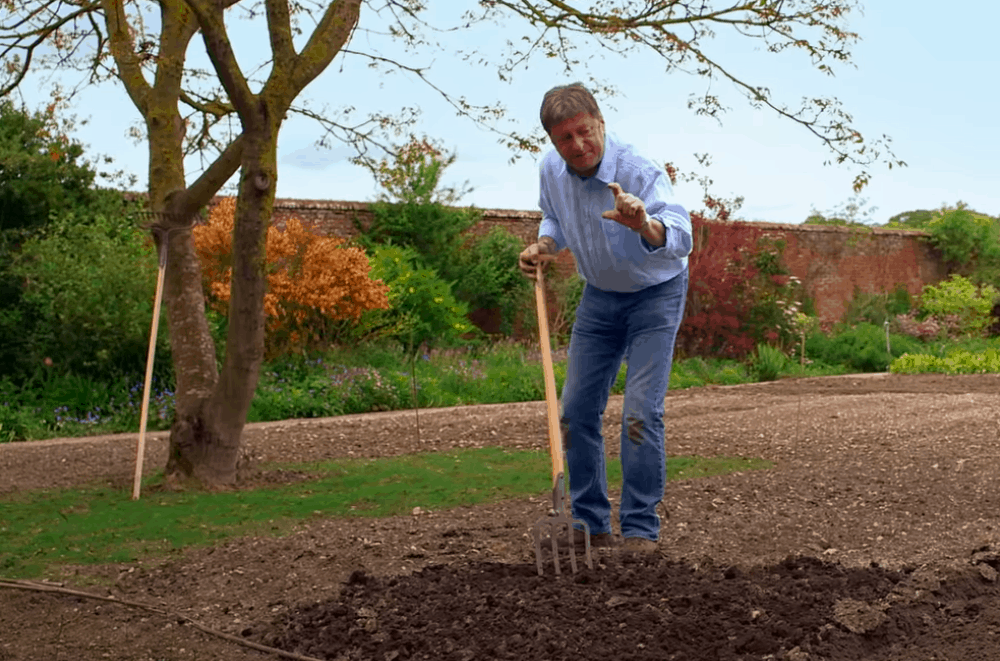 Dig over the soil