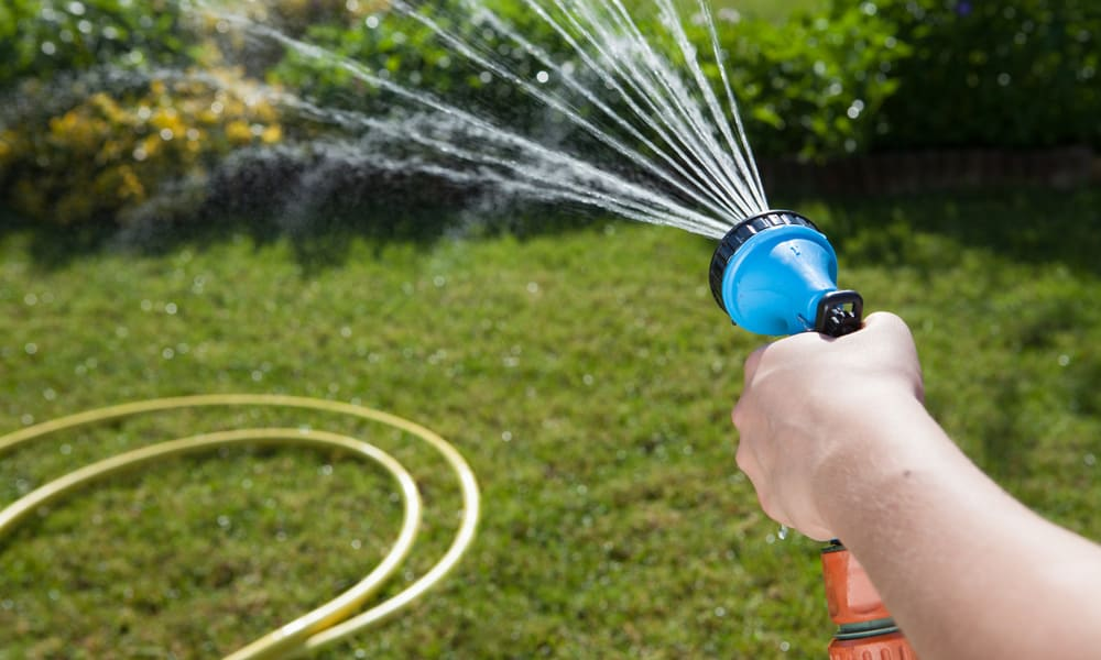 Give your lawn a good watering