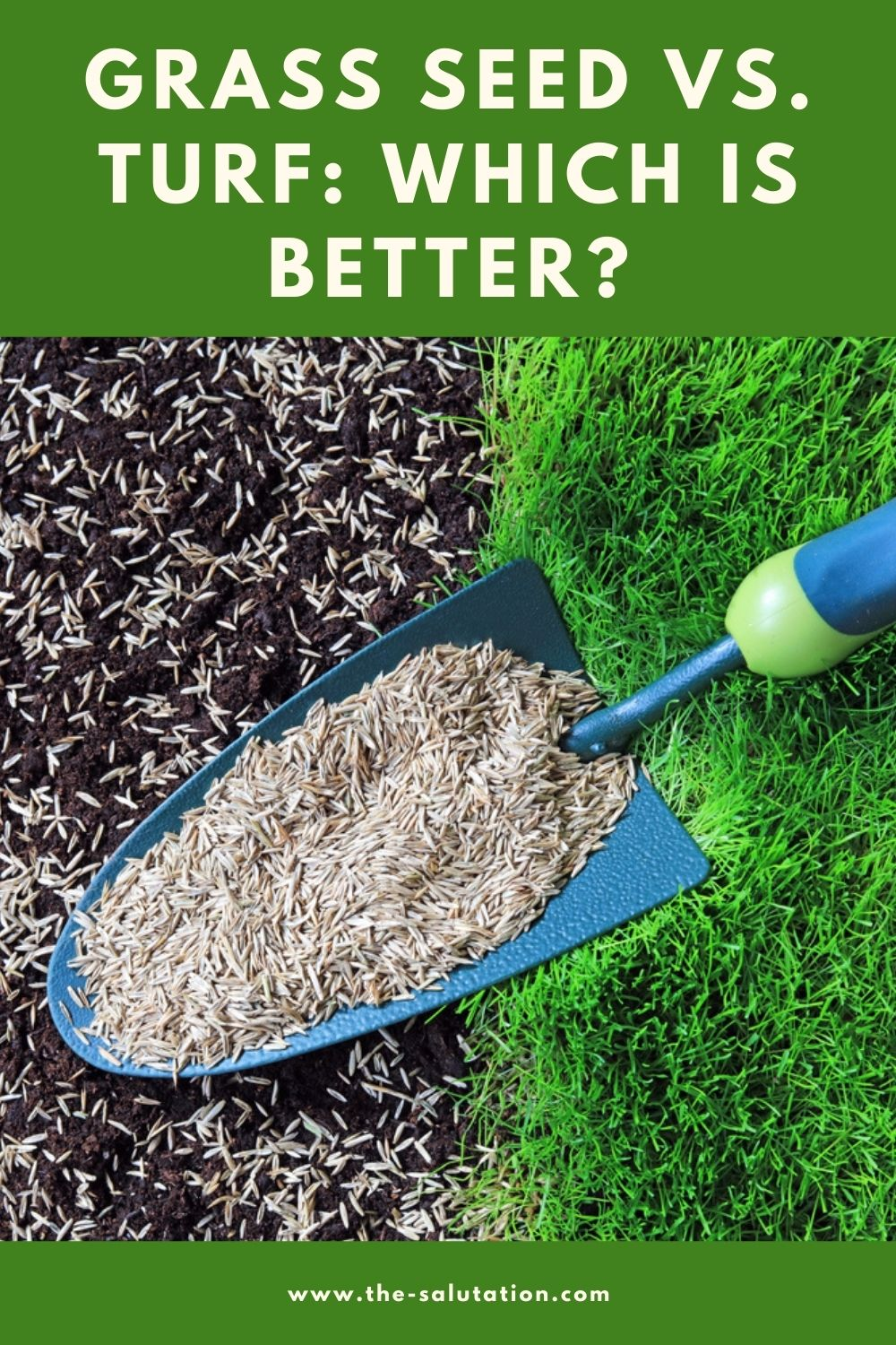 Grass Seed Vs. Turf Which is Better 2