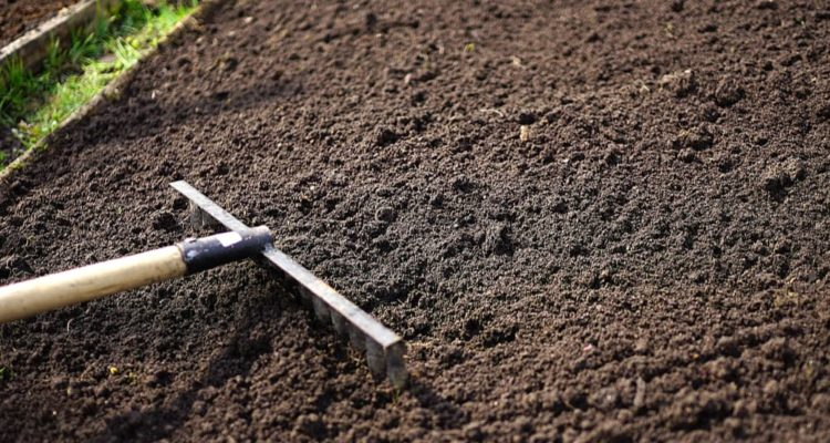 How Much Does Topsoil Cost? (Tips to Save Money)