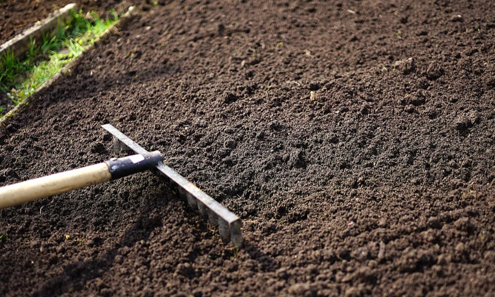 How Much Does Topsoil Cost (Tips to Save Money)