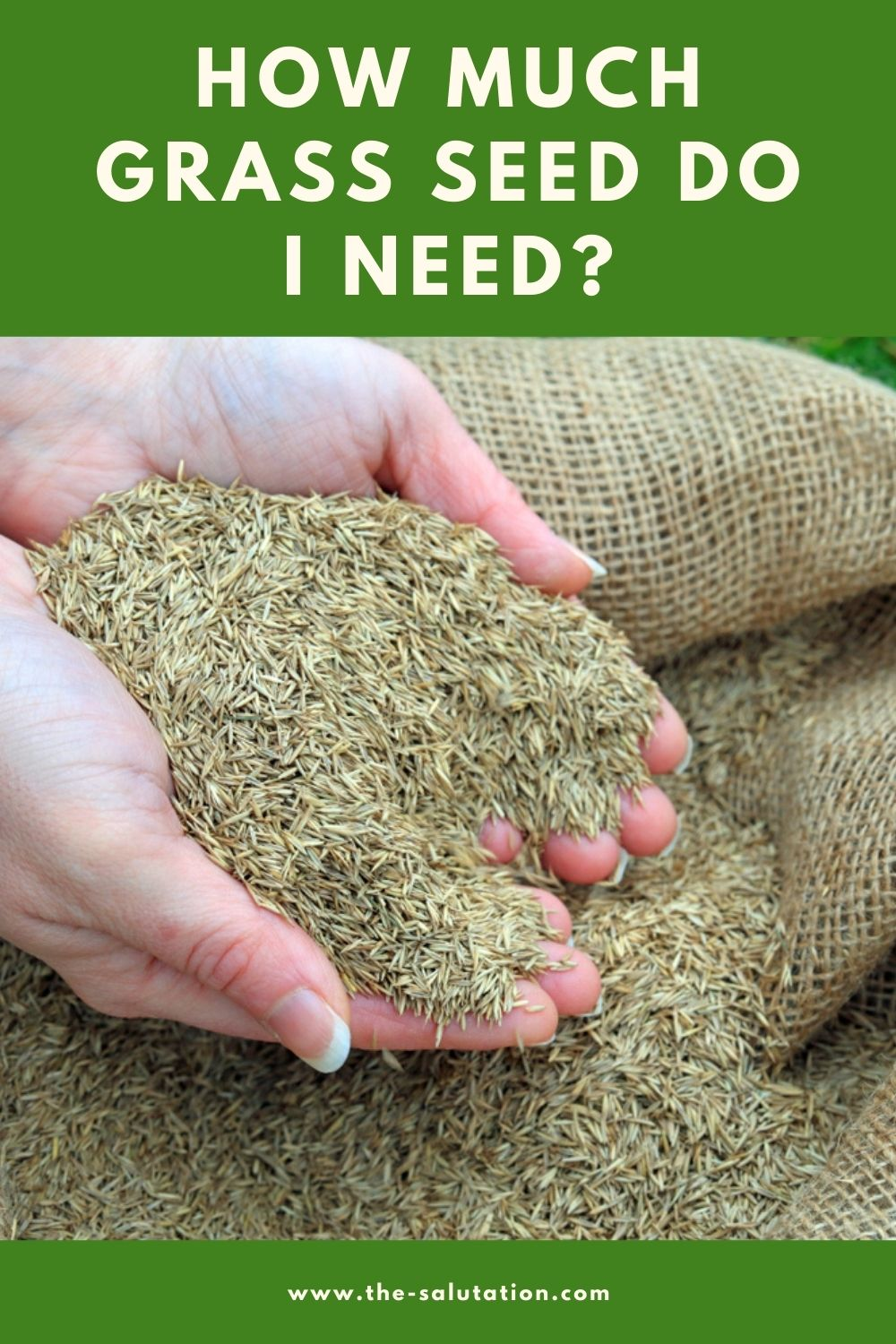 How Much Grass Seed Do I Need 1