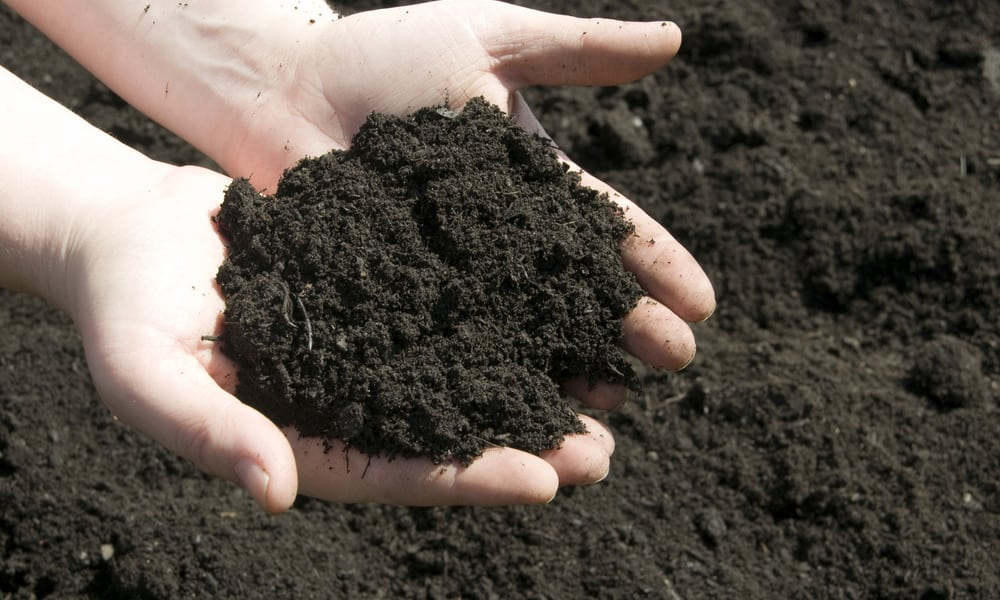 How do you know that you're buying quality topsoil