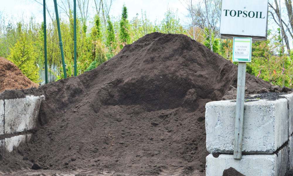 How much should you spend on topsoil
