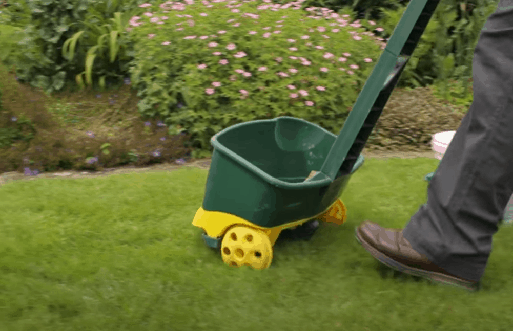 How to apply lawn sand