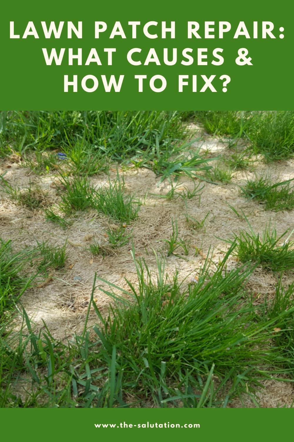 Lawn Patch Repair What Causes & How to Fix 1
