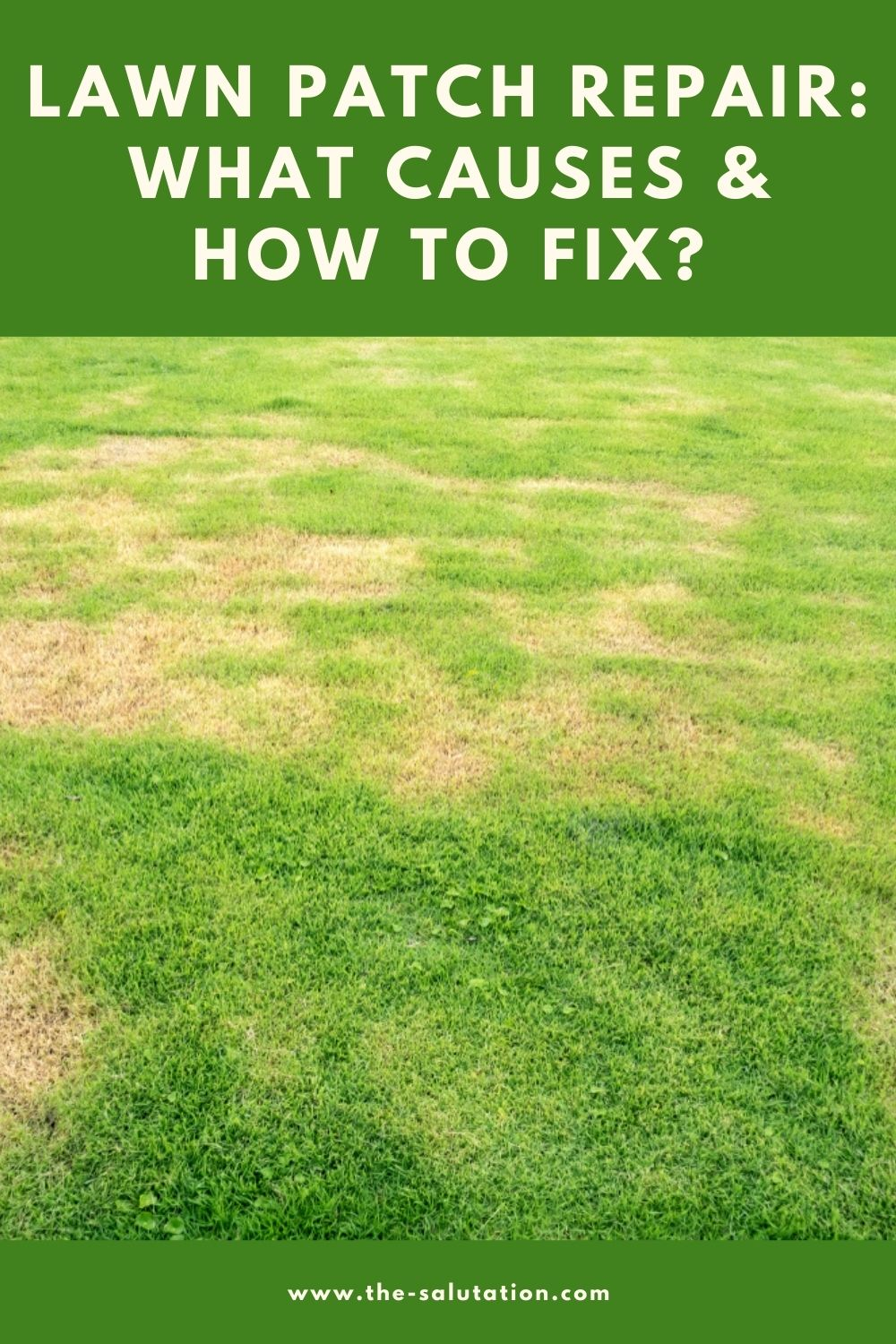 Lawn Patch Repair What Causes & How to Fix 2