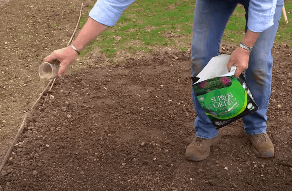Measure out your lawn seed