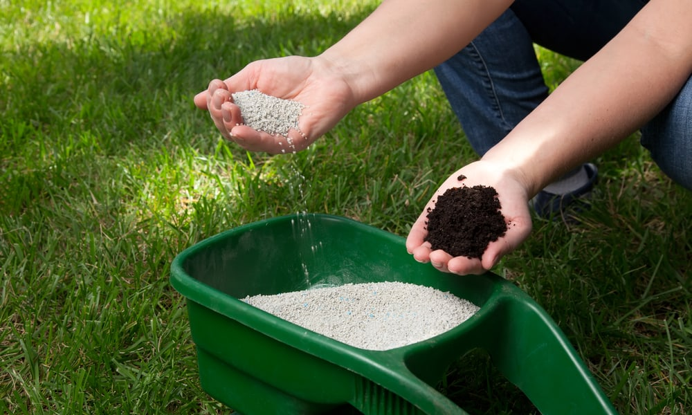 Pre-turf fertilizer vs Regular Fertilizer