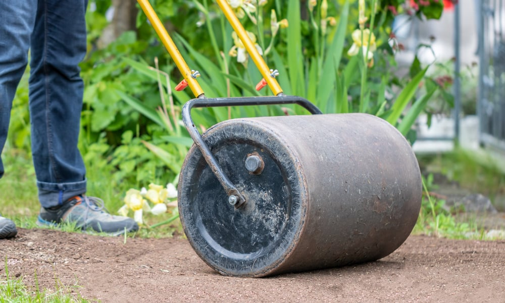 Reasons you should use lawn sand on your lawn