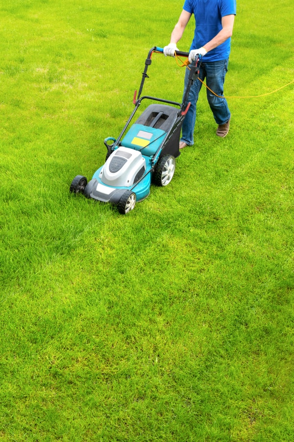 Start by Mowing