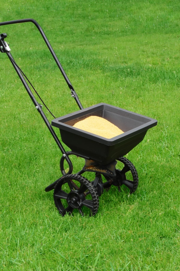 Steps for Feeding Your Lawn