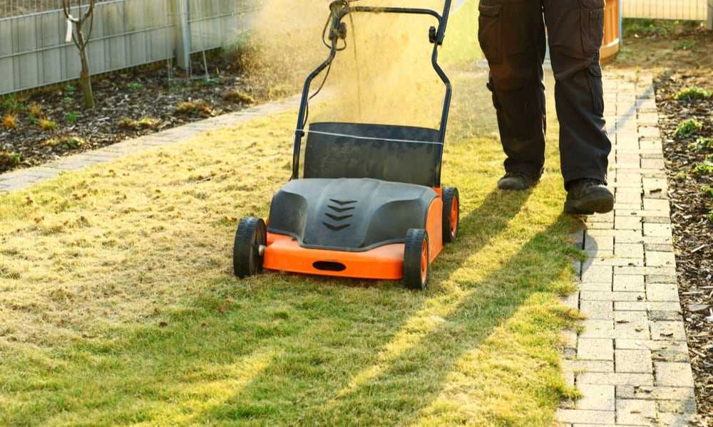 Tips For Choosing The Right Scarifier