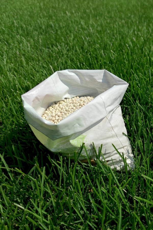 Tips for shopping for pre-turf fertilizers