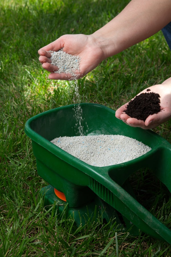 Types of Lawn Feed