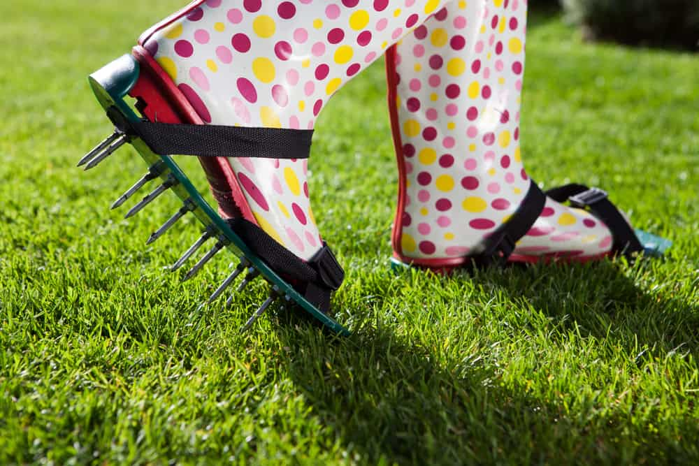 Use a Lawn Aerator