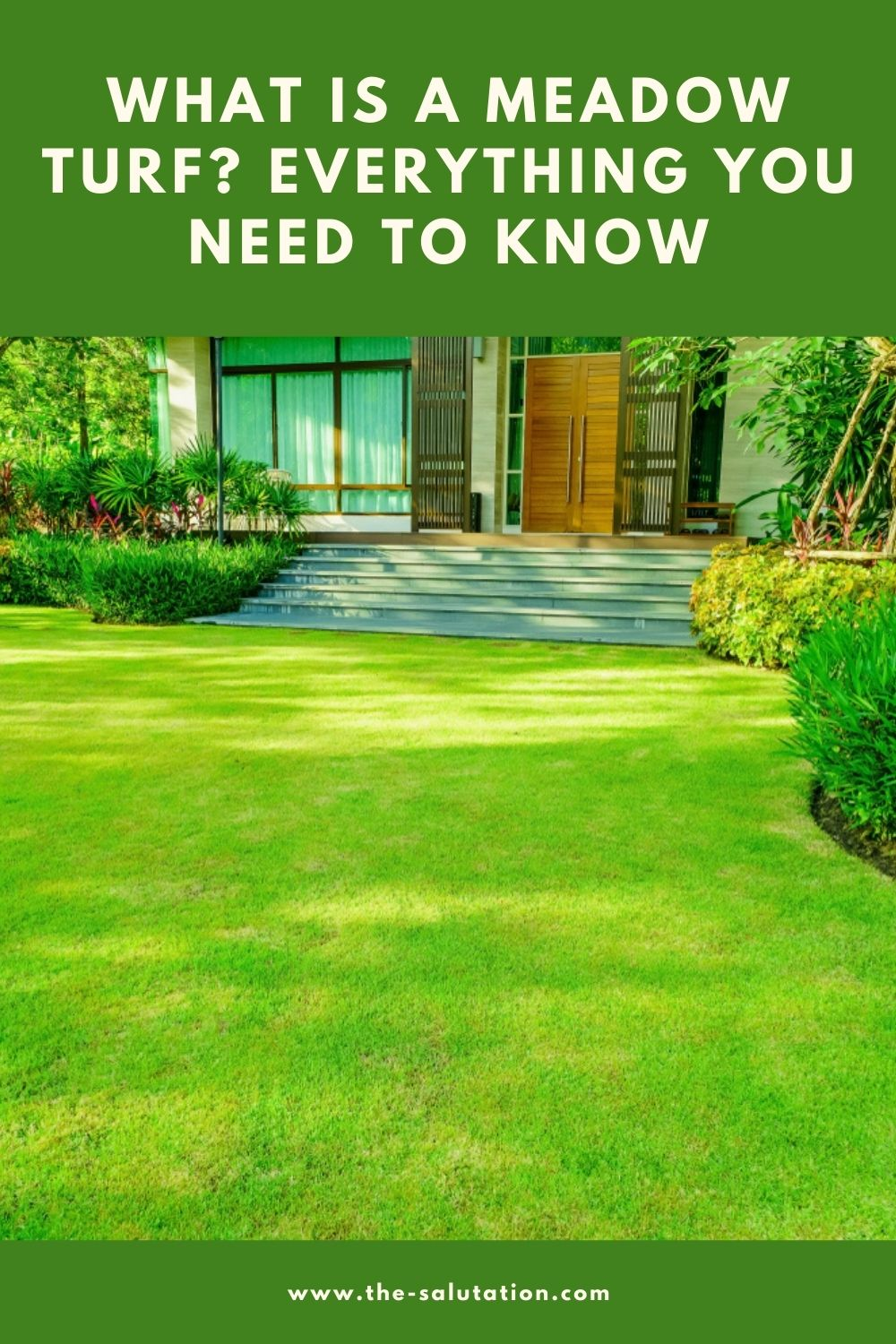 What Is a Meadow Turf Everything You Need to Know 1