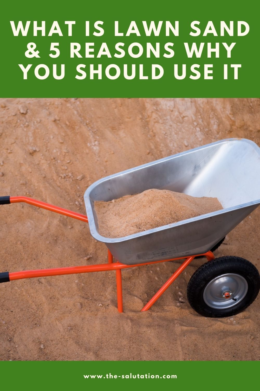 What is Lawn Sand & 5 Reasons Why You Should Use It 2