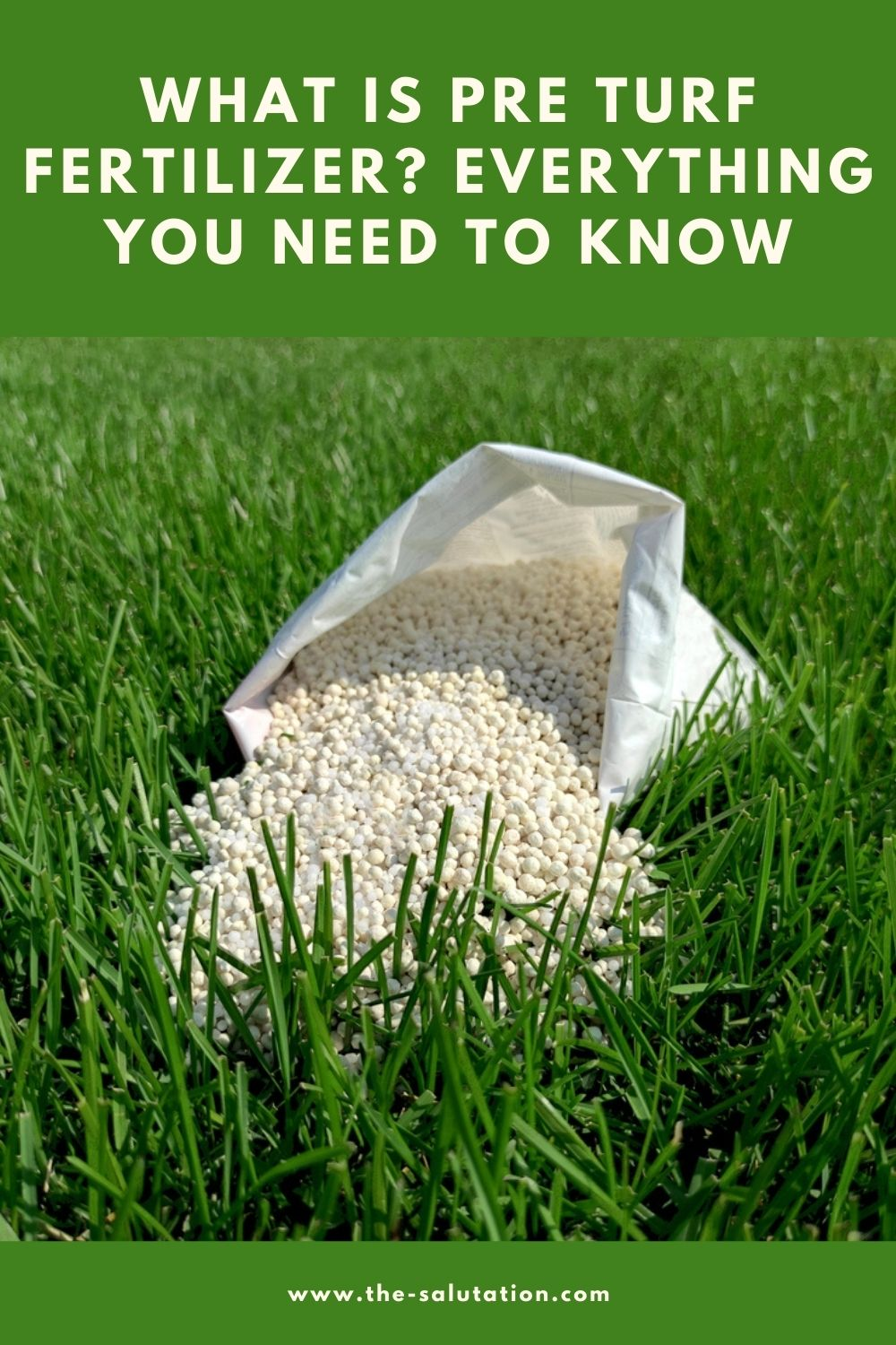 What is Pre Turf Fertilizer Everything You Need to Know 1