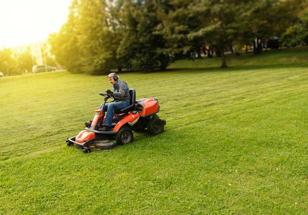 What time of day should you cut your lawn
