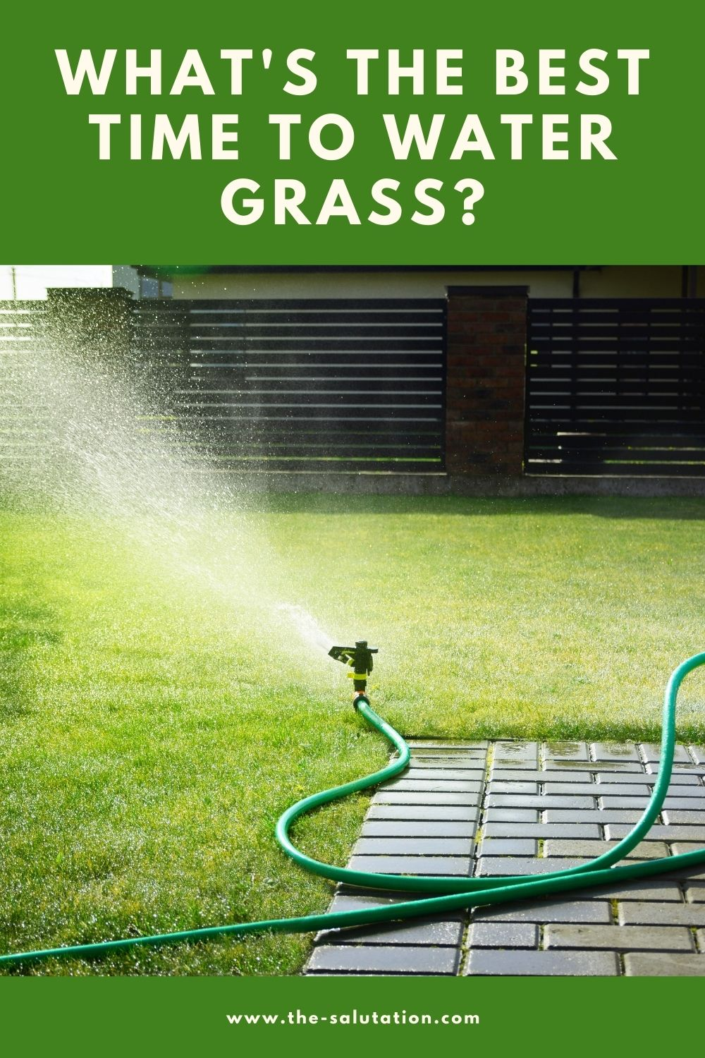 What's the Best Time to Water Grass 1