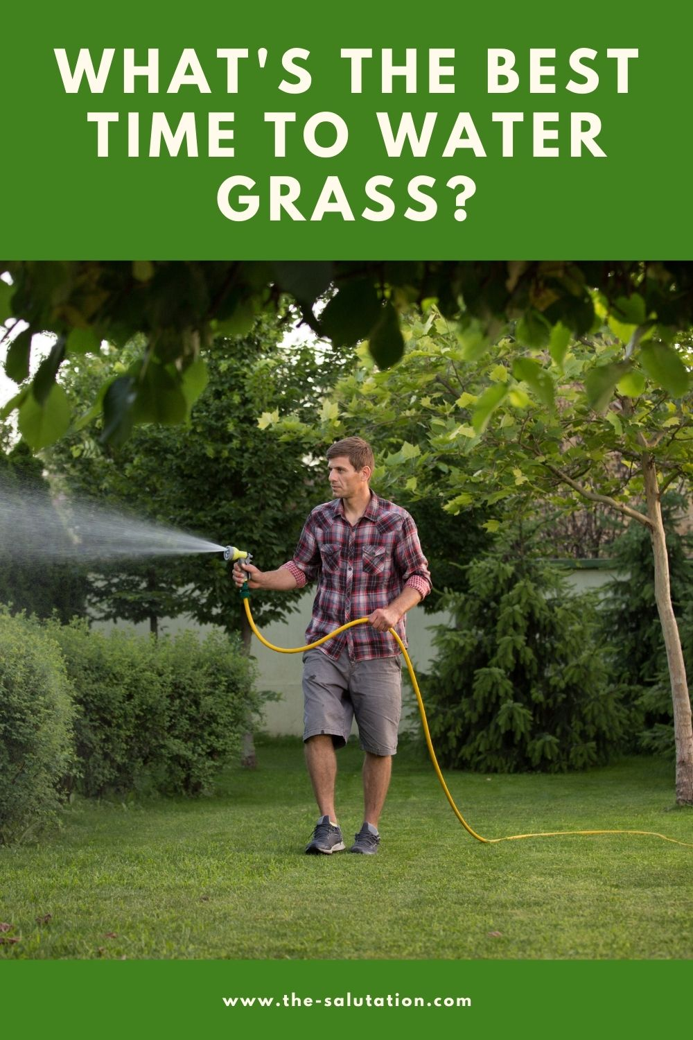 What's the Best Time to Water Grass 2