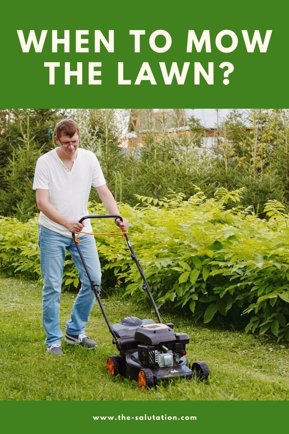 When to Mow the Lawn (7 Tips) 1