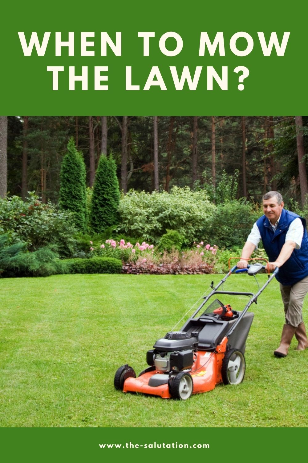 When to Mow the Lawn (7 Tips) 2