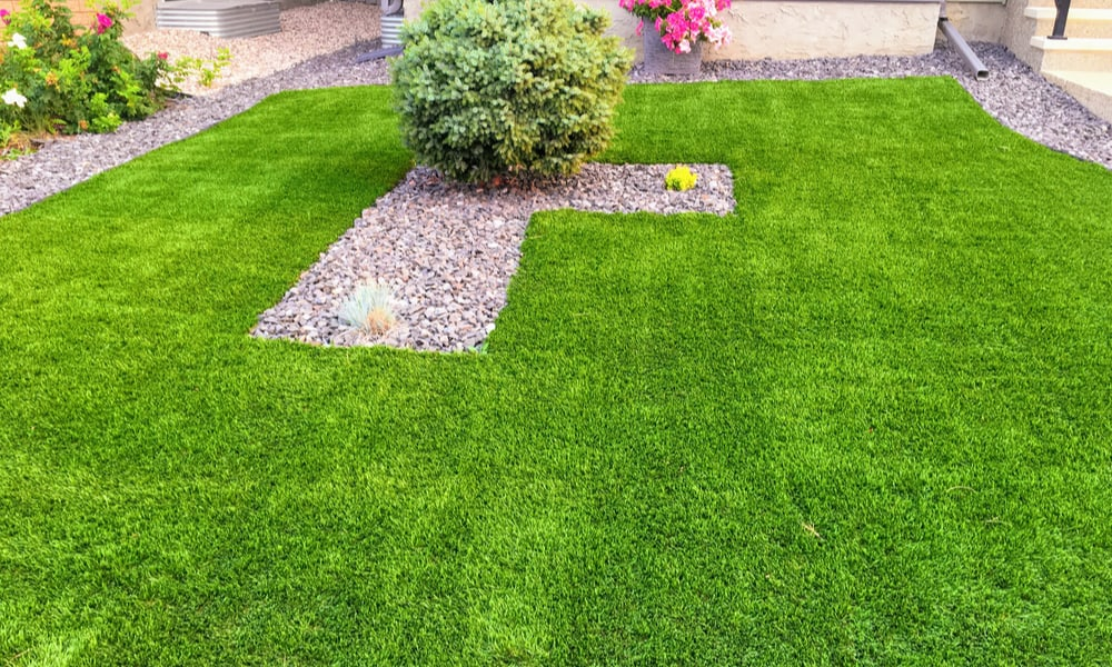 Which One Should You Choose Grass Seed Or Turf