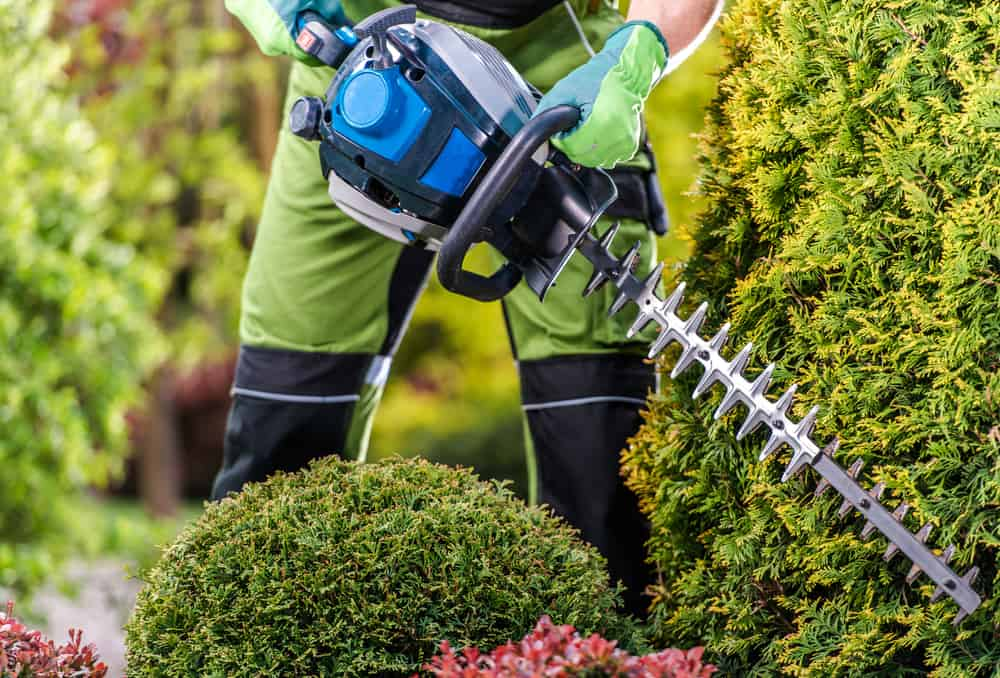 battery powered hedge trimmer