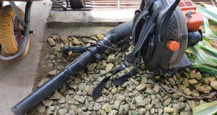 7 Best Petrol Leaf Blowers of 2021 (UK) – Reviews & Buyer Guides