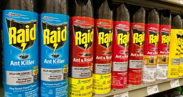 7 Best Ant Killers of 2021 (UK) – Pet Friendly Ant Killer